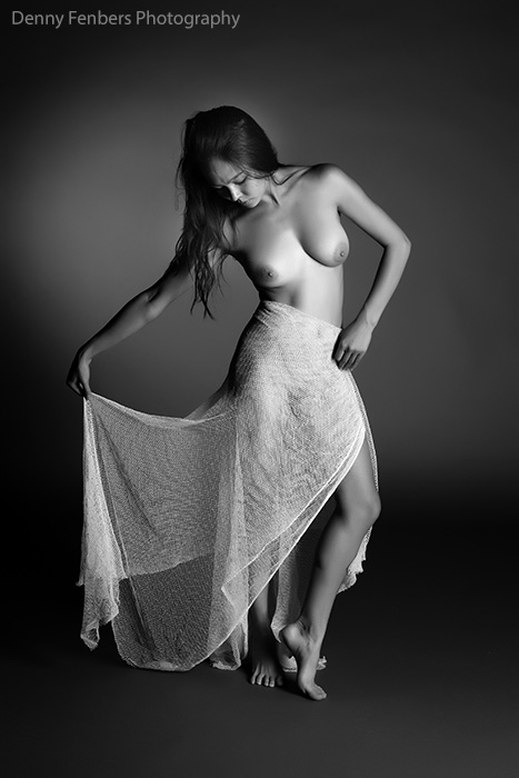 Draped Nude in White Netting