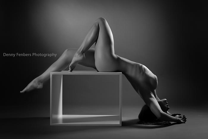 Artistic Nude Figure Photos Denver Colorado